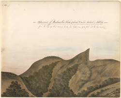 Murkurti Peak, W. of Ootacamund.  February 1852